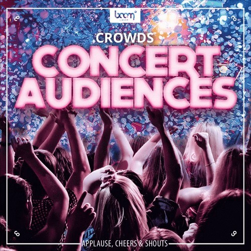 Crowds - Concert Audiences