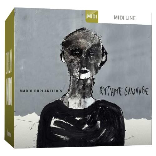 Drum MIDI Rythme Sauvage