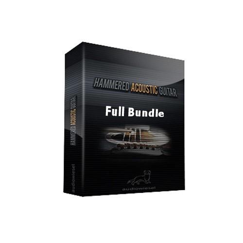 Hammered Acoustic Guitar Full Bundle