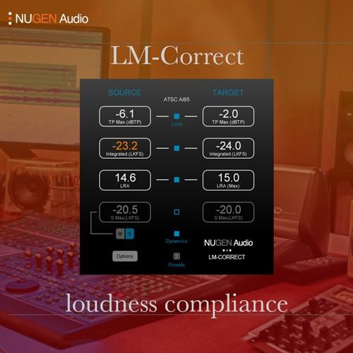 LM-Correct