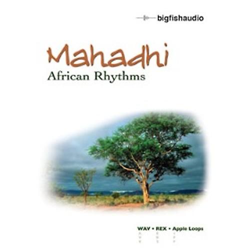 Mahadhi - African Rhythms
