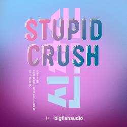 Stupid Crush: K-Pop Construction Kits